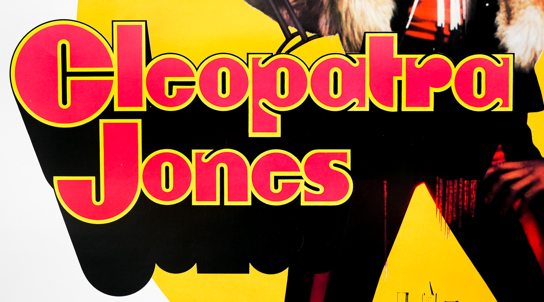 Cleopatra Jones 30x40 Usa
