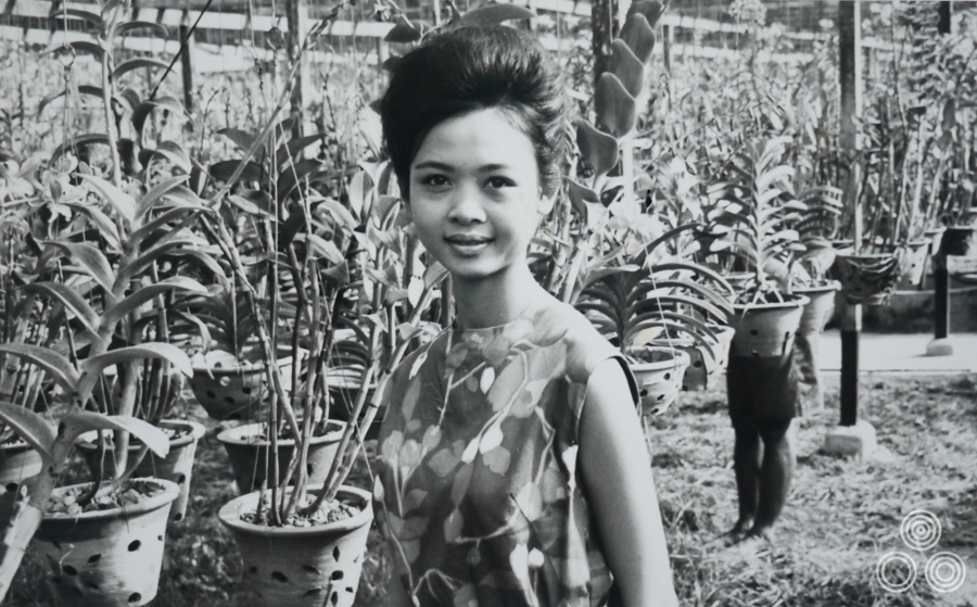 Shirley Chantrell stands in front of her father's greenhouse, aged around 14 in about 1958.